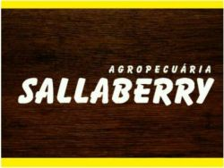 AGROPECUÁRIA SALLABERRY